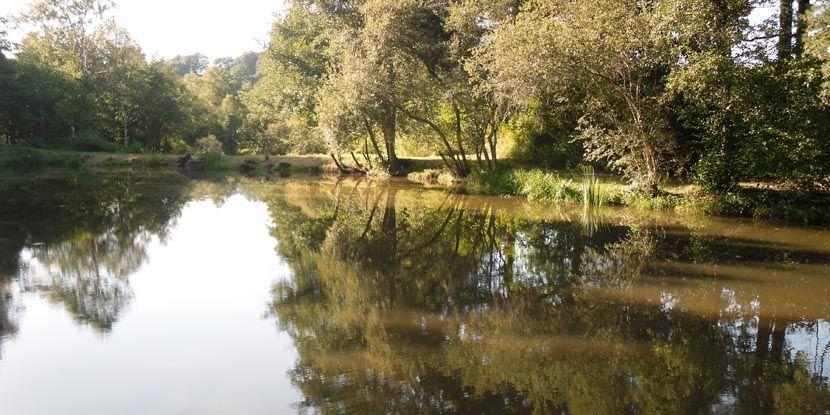 Moulin de la Geneste - Rural Camping in the Limousin, France - camping dordogne etoiles avec piscine
