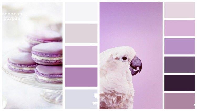 Welche Farben Passen Zu Flieder Und Lila Lila Kinderzimmer Wandfarbe Kuche Farbe