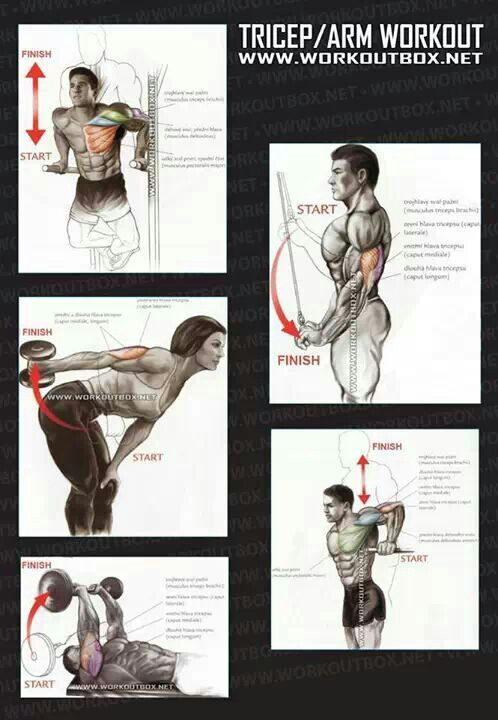 Tricep arm workout