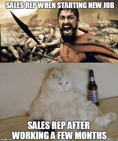 aed3418359f64394fb323cb0485fd838 saleshumor sales humor pinterest meme, work humor and humor,Download Funny Meme Work
