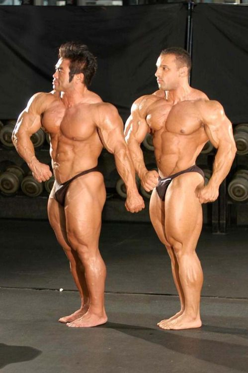 2 muscle studs