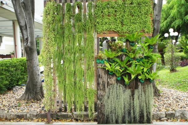 Cuáles son las mejores plantas para muros verdes ¿Te apetece montar - plantas para jardin