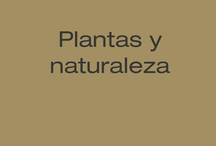 #plantas #naturaleza