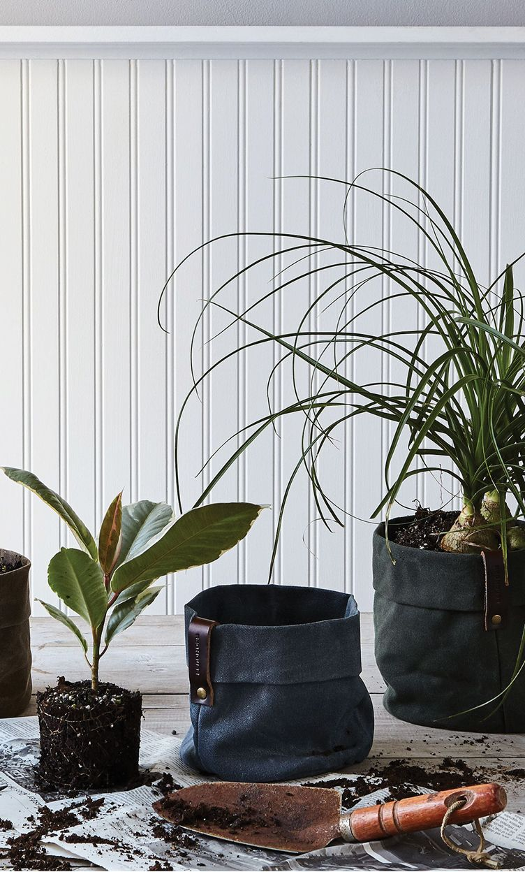 Waxed Canvas Planters | The Shop | Plants, Landscaping