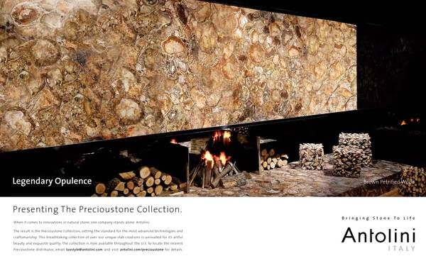 Precioustone Collection Brown Petrified Wood Wood Facade Petrified Wood Marble Countertops