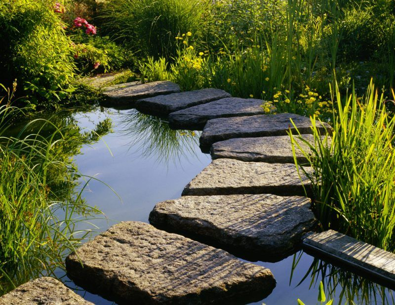 55 Gartenteich Bilder lassen Sie für Ihren Traumgarten inspirieren