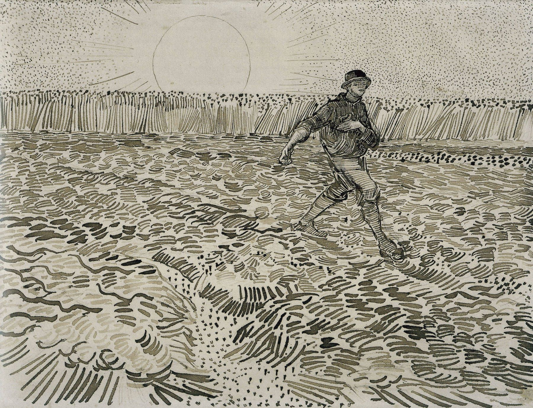 Line Art Van Gogh : The sower van gogh vincent and
