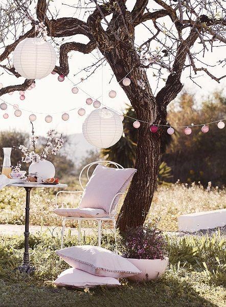 Photo of Mini Oasis Provence