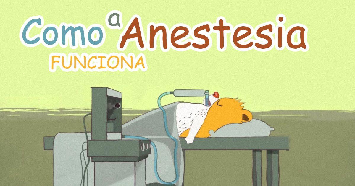 Sabia que você não está a dormir durante uma anestesia? Não fazíamos ideia que a anestesia funcionasse assim!