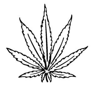 cannabis leaf drawing i image weed pinterest leaf drawing rh pinterest com Yin and Yang Wolf Yin Yang Tumblr