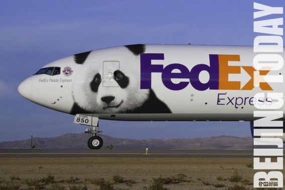 Whatu0027s The Best Airplane Paint Job? Airplanes, Panda and Frogs - fedex jobs