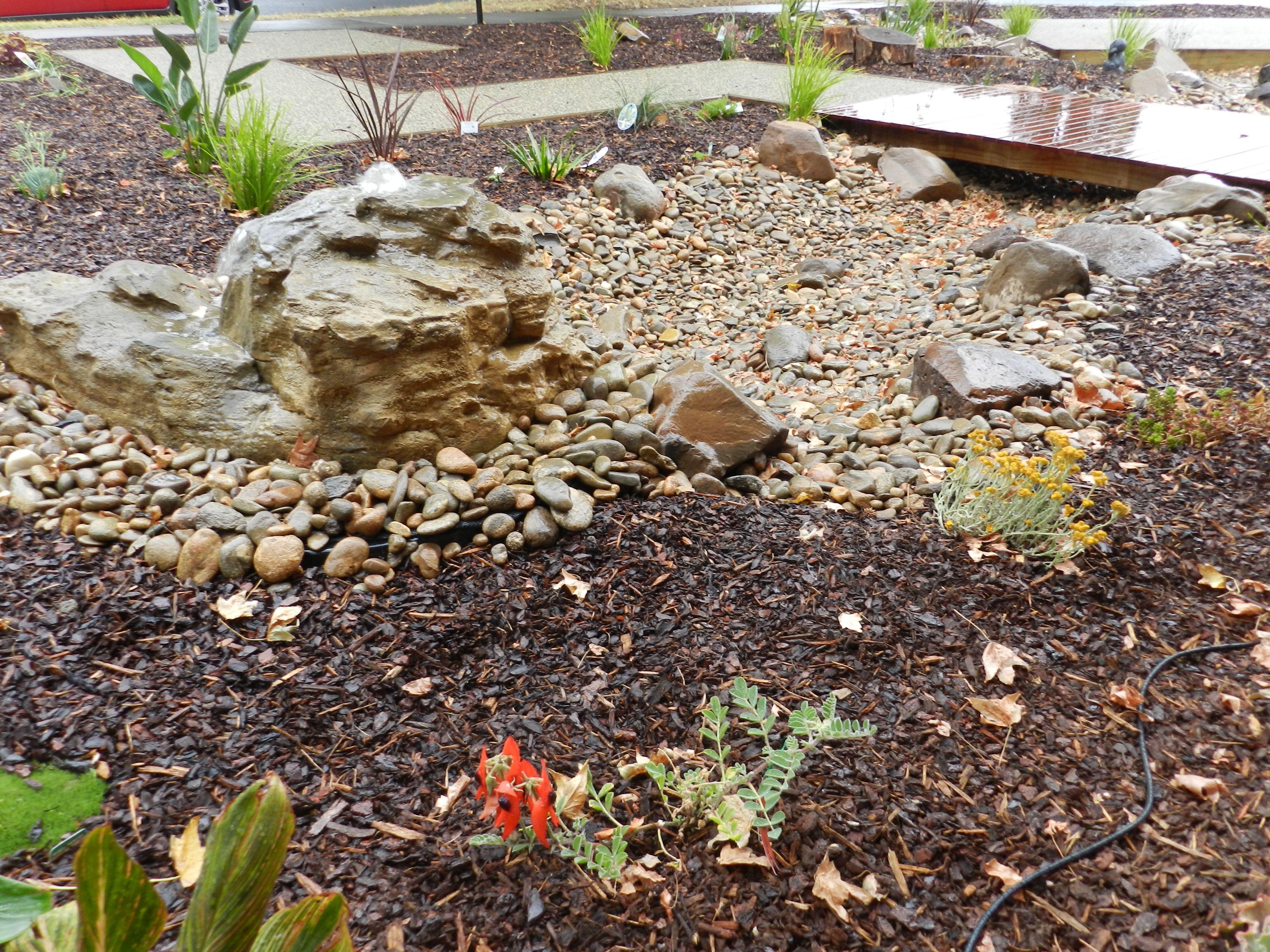 Pin By Alita Marchand On Garden Beautiful Gardens Outdoor Gardens Water Features