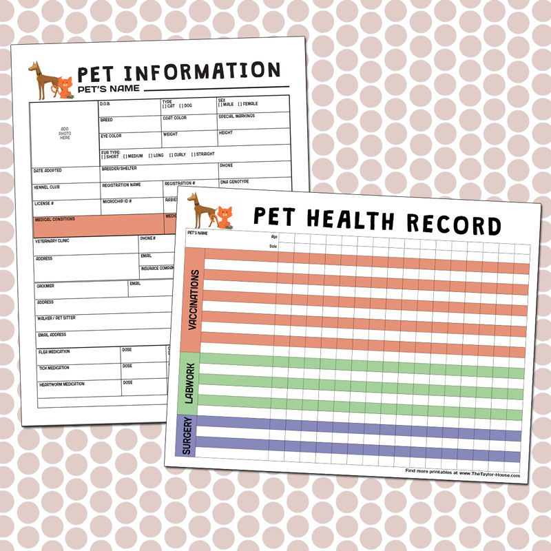 Cat health record book