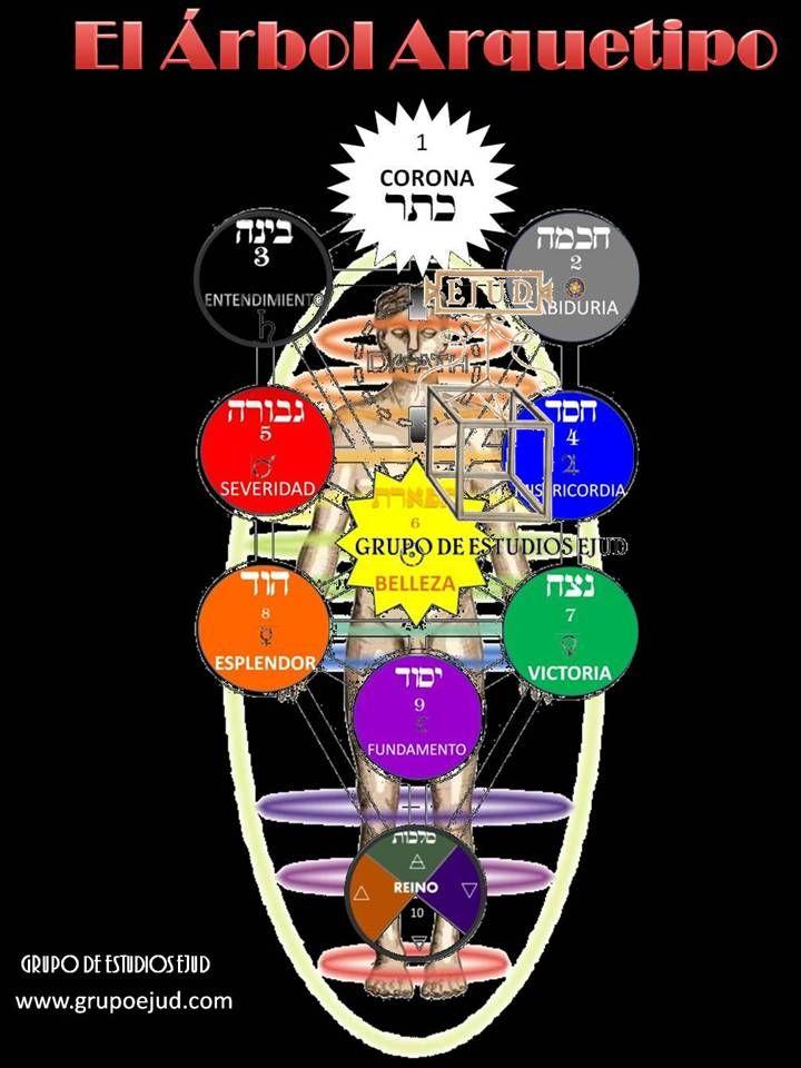 el árbol arquetipo