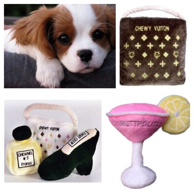 Chewy Vuitton Dog Bed Cavalier King Charles Spaniel Puppy