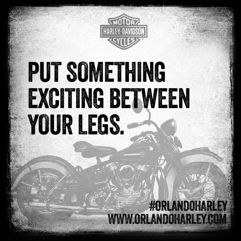 Quote Of The Day Put Something Exciting Between Your Legs Orlandoharley Harleydavidson Harley Harley Davidson Quotes Biker Quotes Rider Quotes