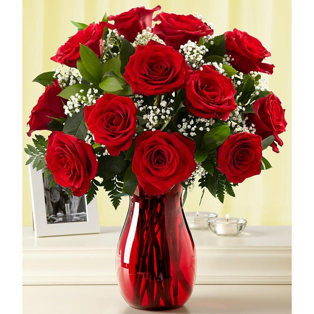 One Dozen Long Stemmed Red Roses (with FREE glass vase