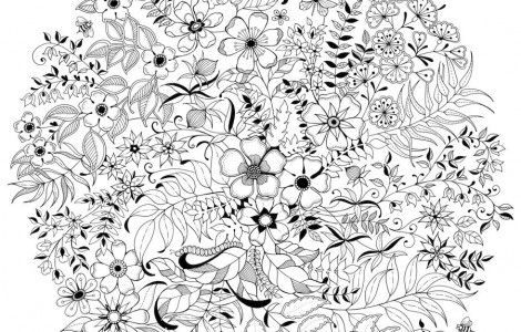 Adults coloring books