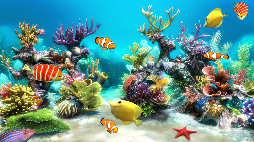 Free Download Sim Aquarium Is An Interactive True 3d Virtual Aquarium That 1280x720 For Your Desktop In 2020 Aquarium Live Wallpaper Cross Paintings Live Wallpapers