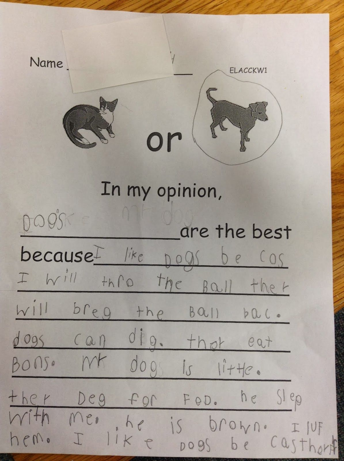 Opinion Writing In Kindergarten Dr Clements