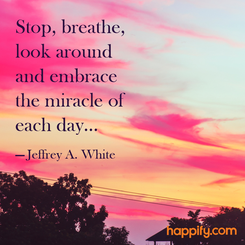 """Amazing Quotes To Live By: """"Stop, Breathe, Look Around And Embrace The Miracle Of"""