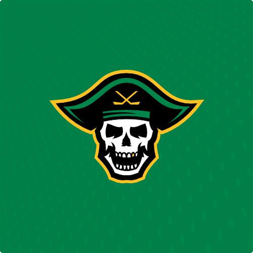 Paraiders Png 500 500 Team Logo Design Sports Logo Logo Design