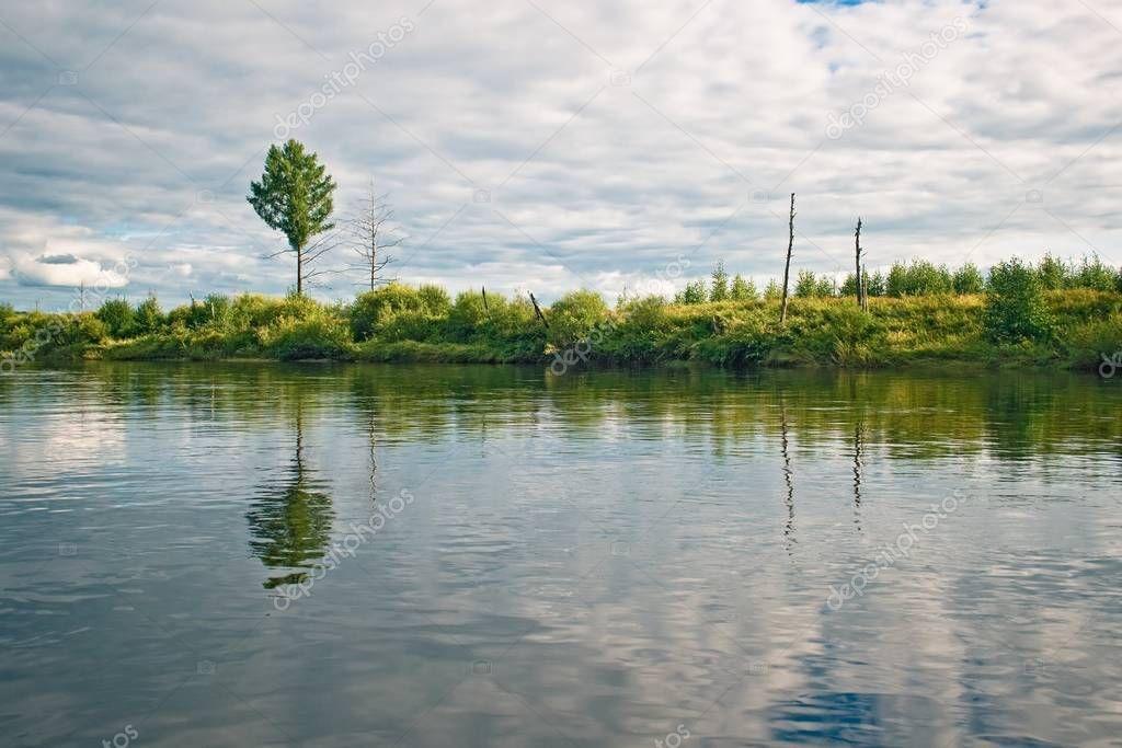 Dep River Bank Amur Region Russia Stock Photo Ad Bank Amur Dep River Ad River Bank River Region