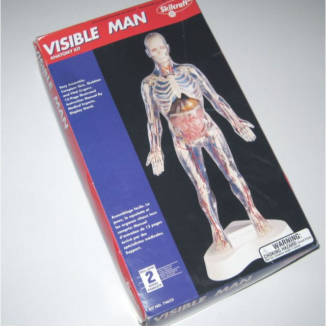 Visible Man. While it was definitely an interesting and educational ...