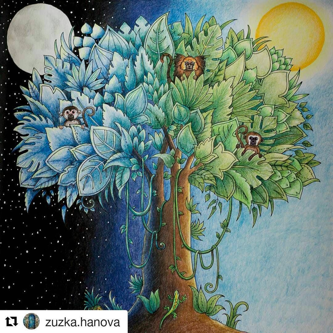 Post by desenhoscolorir on Instagram   Vibbi   Johanna Basford ...