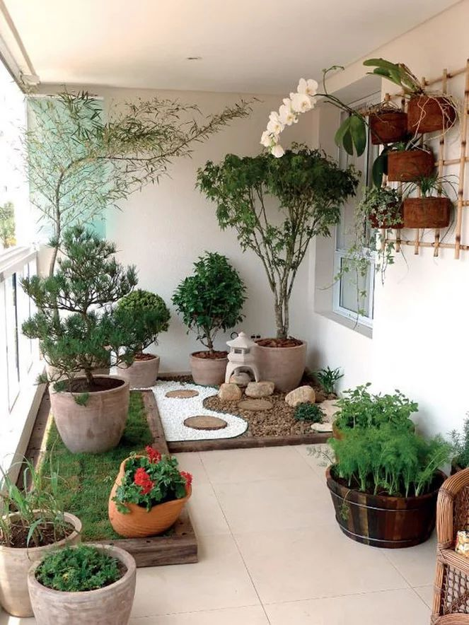 A tiny balcony garden with a feel like a pocket garden. Apartment ...