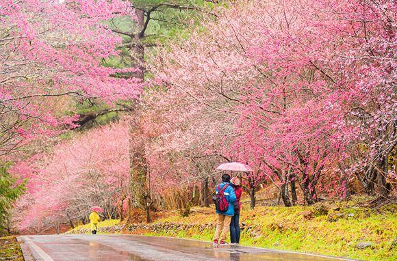 Top 10 New Adventure Travel Trips Taiwan Itinerary Taiwan Taiwan Travel