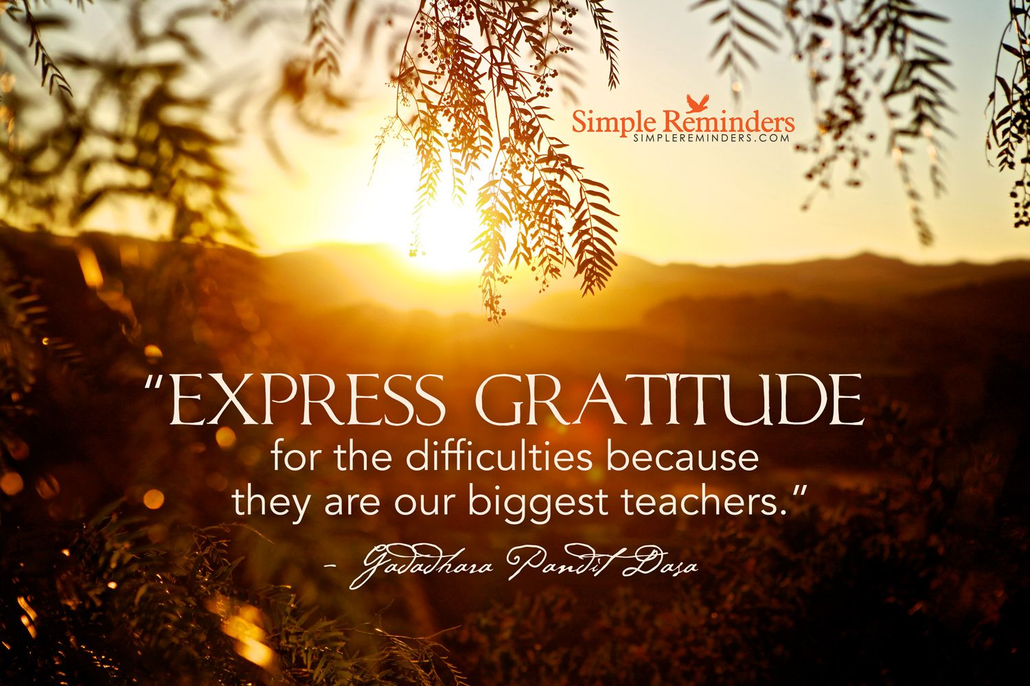 Express gratitude for the difficulties because they are our biggest teachers. ~Gadadhara Pandit Dasa  #values #gratitude #thankful #difficulties #lesson #teachers #life  @SIMPLE Comunicación Comunicación Reminders