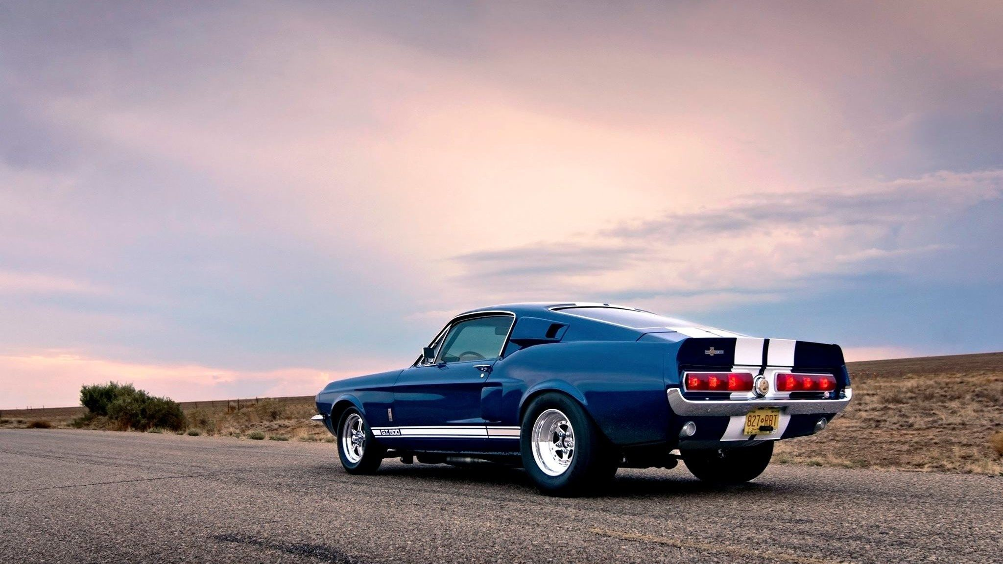 Halen Ross Free puter ford mustang pic 2048x1152 px