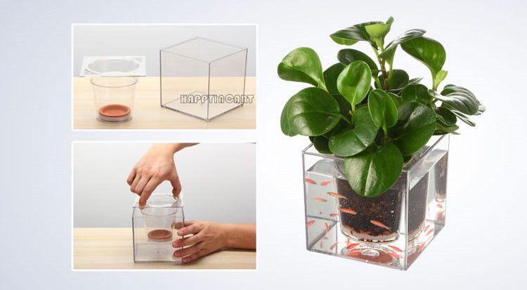 Escritorio de oficina creativa env o planta de riego pot for Plantas para oficina