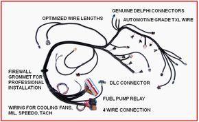 Swap Wiring Harness L S motor Ls swap, Engine swap, Ls