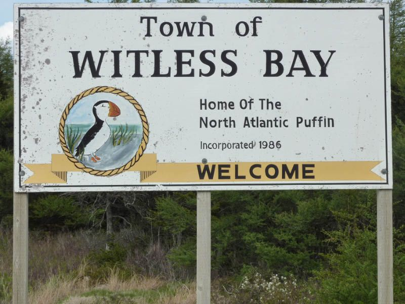 Witless Bay Newfoundland Nearby Campgrounds And Rv Parks