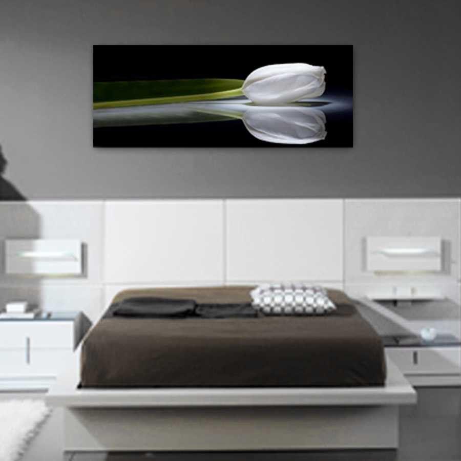 Cuadros para dormitorios modernos Foto de un tulipn formato