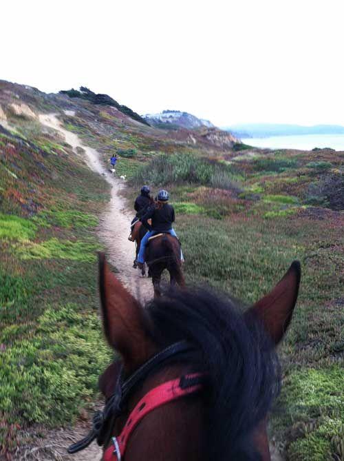 Horseback Riding In San Francisco Trail Rides Beach Mar Vista