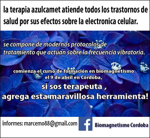 Curso De Formacion En Biomagnetismo Terapia Con Imanes Cordoba Cursillo Terapia Tratamientos