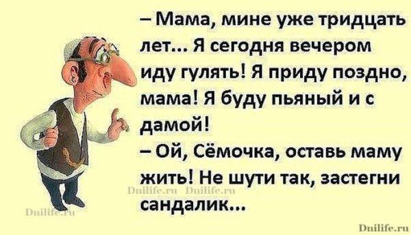 <h4>Анекдоты приколы</h4>