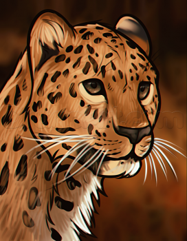How to Draw a Leopard Head, Step by Step, Rainforest