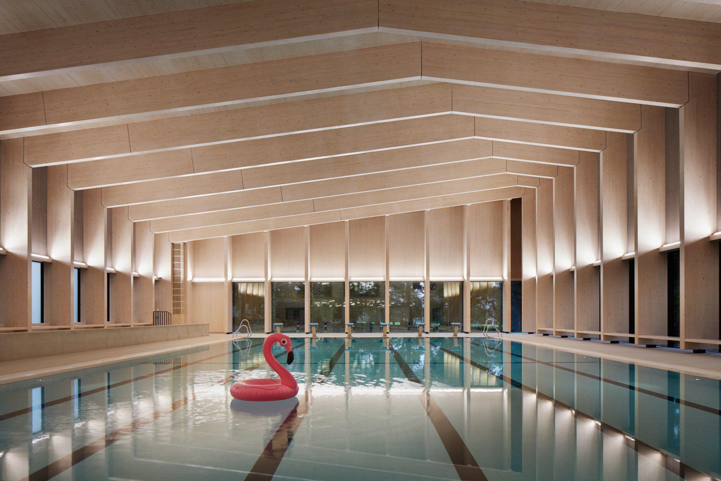 HawkinsBrown uses engineered wood to build school swimming pool ...