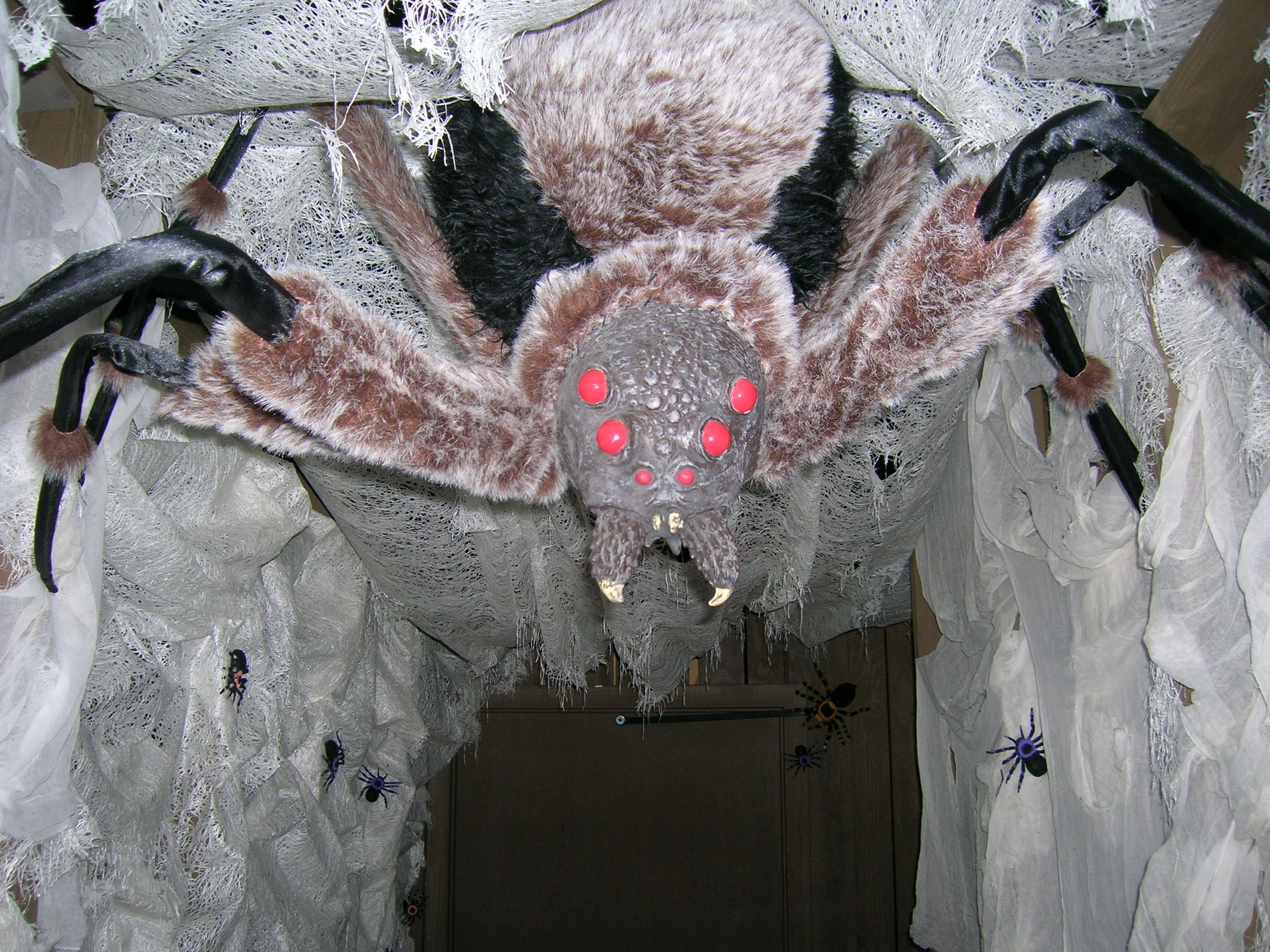 Halloween Spider Tunnel This Went Into A Farm Haunt In
