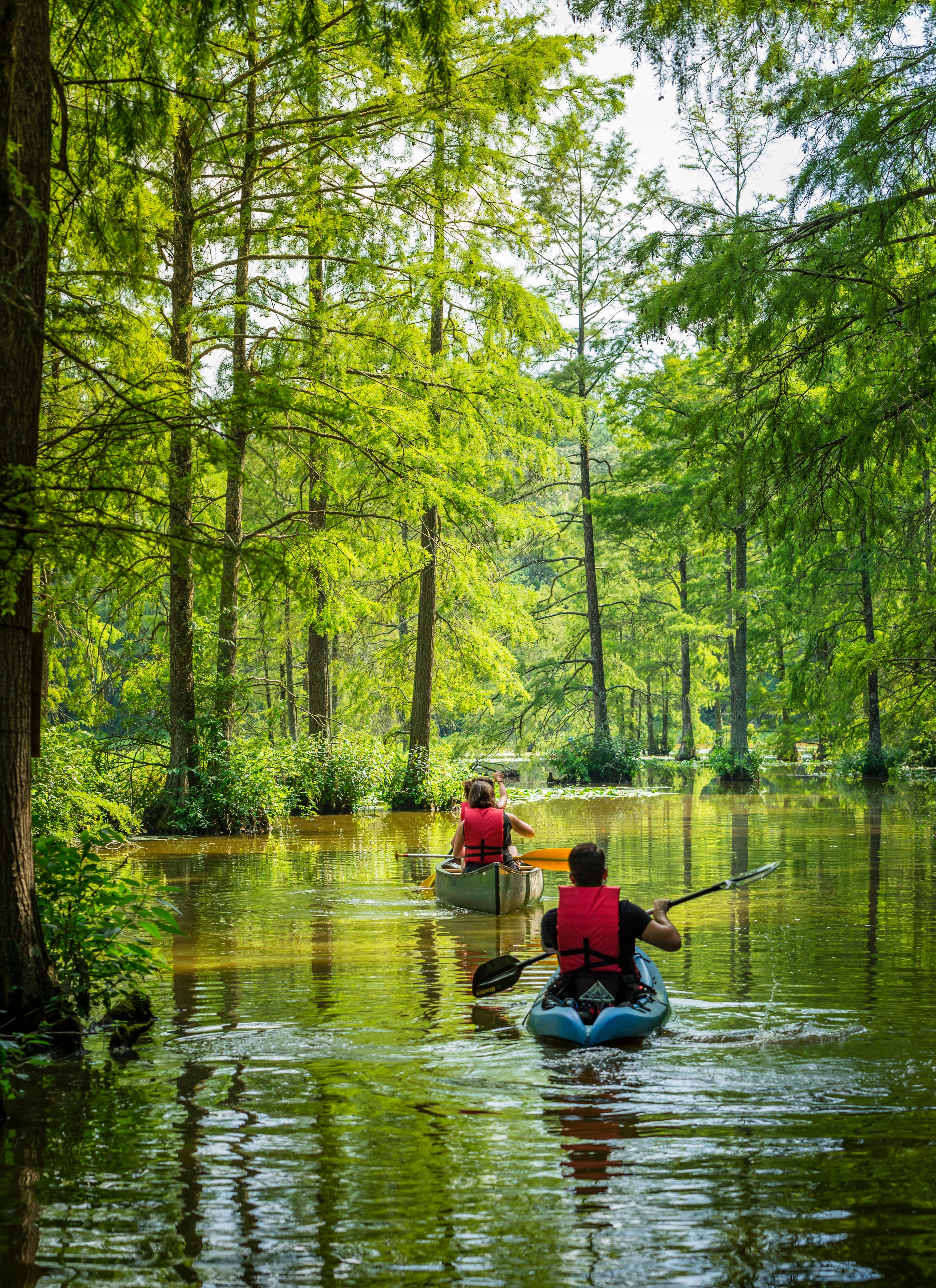Kayaking at Delaware State Parks: Trap Pond State Park | Paddling in