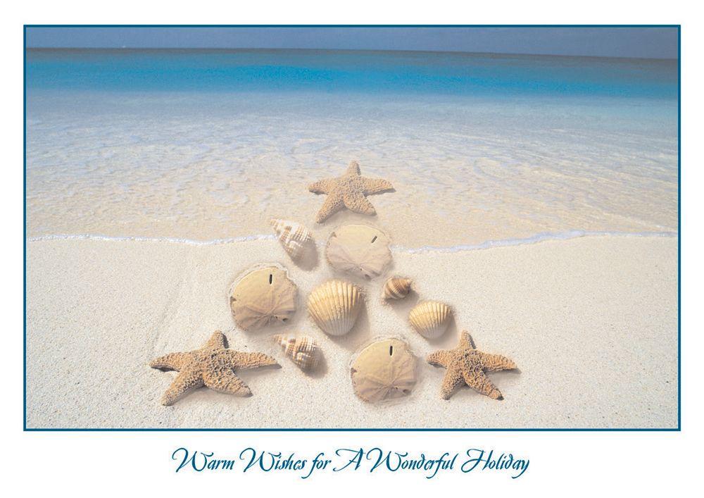 Nautical Tree Tropical Beach Christmas Card - Advanced Printing ...