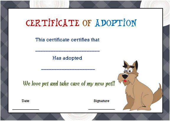 blank pet adoption certificate Blank adoption certificate template - best of pet health certificate template