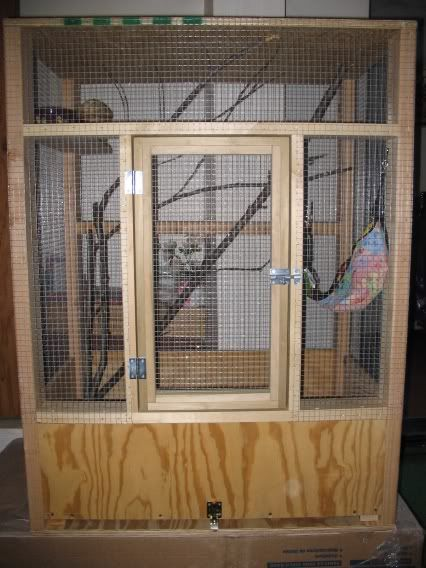 Flying Squirrel Enclosures Flying Squirrel Pet Flying Squirrel Outdoor Cat House