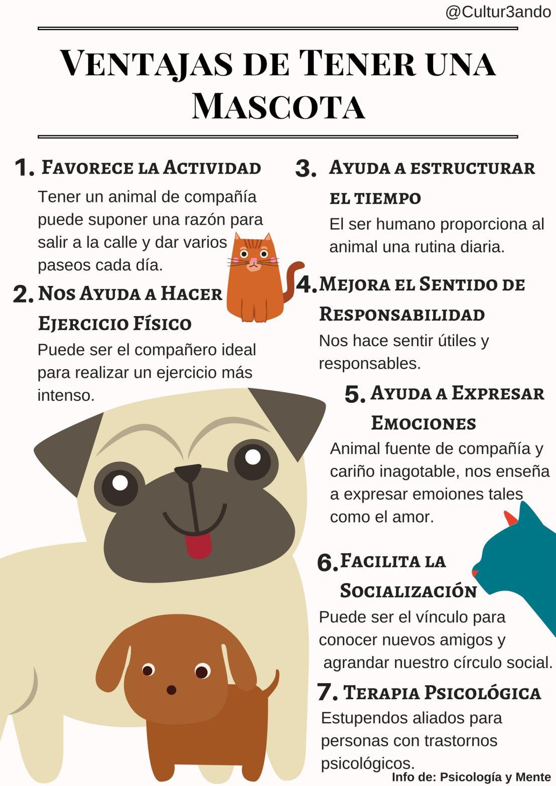 Ventajas de Tener una Mascotas (+Infografía)