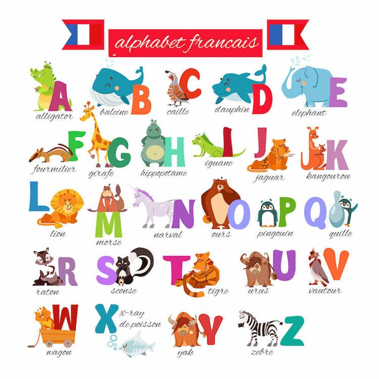 French Alphabet With Animals French Alphabet Alphabet Illustration Cute Cartoon