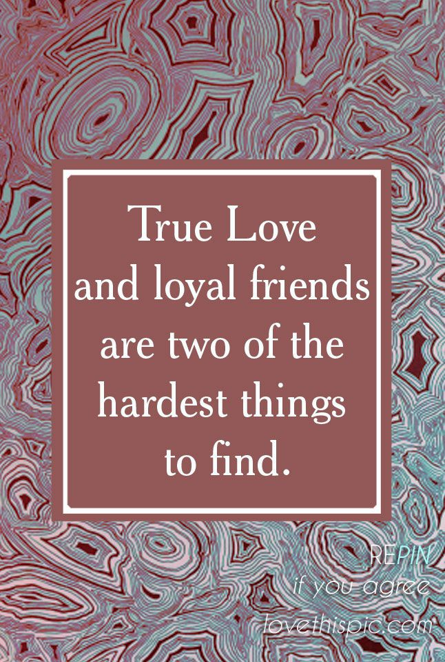 Pin on True Love Quotes for Him Her |True Love Philosophy